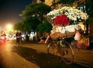hà nội, mùa đông, hoa cúc, cúc họa mi, xe bán hoa, đường phố