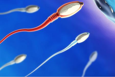 Những xét nghiệm thường được chỉ định khi đi khám vô sinh- hiếm muộn cho nam giới