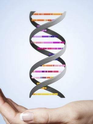 gay, đồng tính, quan hệ đồng tính, gen đồng tính, sức khỏe, giới tính