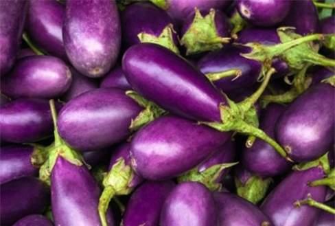 màu sắc, thèm ăn, thực phẩm, ngon miệng, cảm giác đói, ưa thích, tăng cảm giác thèm ăn