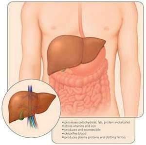 viêm gan siêu vi b, bệnh lây nhiễm, sức khỏe, nguyên nhân, cách đề phòng, chăm sóc