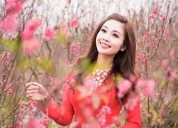 Mỹ nữ Việt đẹp ấn tượng bên hoa cỏ mùa xuân
