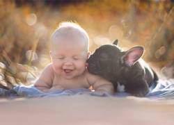 Ngộ nghĩnh, thú cưng, em bé, đáng yêu, bộ ảnh, bức ảnh, em bé bên thú cưng