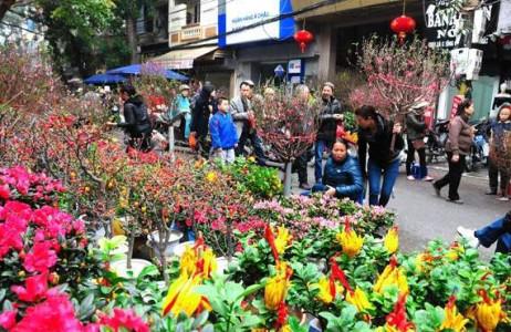 Hay tết nay, những loại hoa và cây cảnh may mắn dịp Tết vẫn được người dân ưa chuộng.