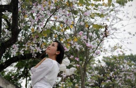 Thiếu nữ duyên dáng với sắc tím của hoa ban.