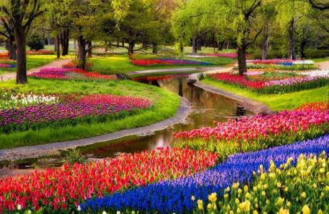 Luôn nằm trong danh sách những khu vườn mùa xuân đẹp nhất thế giới, Keukenhof có hơn 7 triệu hoa tulip, hoa thủy tiên vàng và lục bình trải dài trên diện tích khoảng 32 ha. Tuyệt vời hơn, trong thời gian thưởng hoa, bạn còn có được những lời khuyên hữu ích về cách sử dụng hoa. Ngoài ra, trong khu vườn hoa tuyệt đẹp này còn có rất nhiều nhà hàng, cà phê, các tour du lịch với xe đạp, thuyền mà bạn không thể bỏ lỡ.
