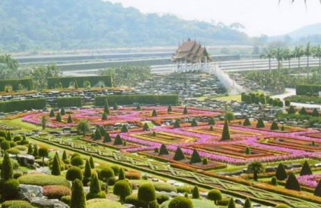Khu vườn Suan Nong Nooch được mở cửa vào năm 1980 không chỉ là khu vườn đẹp nhất Thái Lan mà còn là một trong những khu vườn được yêu thích nhất thế giới. Tại Nong Nooch Pardise có nhiều khu vườn xinh đẹp, với những vườn cọ, thiên tuế khổng lồ, cùng với những  vườn lan lớn nhất Thái Lan được tỉa tót chỉn chu.