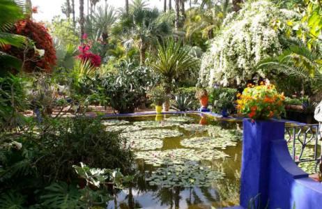 Jardin Majorelle là điểm dừng chân không thể bỏ qua khi đến Ma rốc, thu hút hàng triệu du khách đến tham quan mỗi năm. Khu vườn như một bức tranh tuyệt đẹp, yên bình đan xen giữa cây xanh, hồ nước, các loại hoa... do họa sĩ Jacques Majorelle thiết kế vào năm 1920. Ngày nay chủ nhân mới của vườn là nhà thiết kế thời trang nổi tiếng Yves Saint Laurent.
