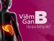 Bệnh viêm gan B, đường lây, bệnh truyền nhiễm, dấu hiệu, ngăn ngừa, cua so tinh yeu
