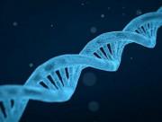 khả năng sản xuất tinh trùng, sản xuất tinh trùng, nhiễm sắc thể, vấn đề sức khỏe, Sức khỏe sinh sản, nam giới, cua so tinh yeu