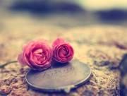 chia tay, giận hờn, người yêu mới, đau khổ, day dứt, tâm sự tình yêu, ruồng bỏ, dứt khoát chia tay, níu kéo