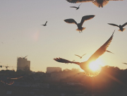blog, tình yêu, chia tay, cửa sổ tình yêu,giới trẻ,tâm sự