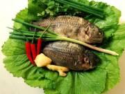 món ngon, món canh ngon, canh cải xanh nấu cá rô, món ngon từ cá rô, món ăn truyền thống
