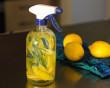 chanh, công việc dọn dẹp, thực phẩm bổ sung, Bổ sung vitamin, máy xay sinh tố, xay sinh tố, bàn chải đánh răng, lò vi sóng , cua so tinh yeu