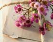 Tâm sự, Tâm sự khi yêu, Thất tình, Buông bỏ để sống hạnh phúc, Buông bỏ, cua so tinh yeu
