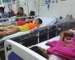 Số lượng bệnh nhi, mắc bệnh sốt xuất huyết, liên tục tăng cao, cua so tinh yeu