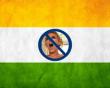Ấn Độ, Internet, Trang web ,khiêu dâm, Quyền tự do