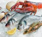 cách bảo quản, hải sản đông lạnh, bảo quản hải sản, tươi ngon, cach bao quan hai san, cua so tinh yeu