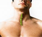 viêm họng, thực phẩm trị viêm họng, thực phẩm dân gian, cua so tinh yeu