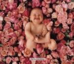 trẻ nhỏ, biểu hiện, bình thường, vàng da, chướng bụng, bụng to, chớ sữa, tiêu hóa