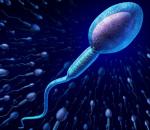 tinh trùng, thói quen dễ gây vô sinh ở nam giới, nâng cao chất lượng tinh trùng