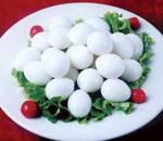 trứng chim cứt, sức khỏe, gia đình, dinh dưỡng
