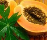 bí quyết sống khỏe, ăn đu đủ, quả đu đủ, dinh dưỡng, chữa bệnh, đau bụng kinh,ung thư