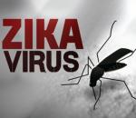 hà nội đối phó với zika, virus zika, phòng chống virus zika