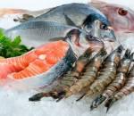 lỗi chế biến hải sản, bảo quản hải sản, dinh dưỡng, sức khỏe