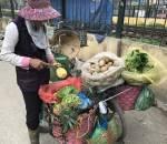 bán rau, tiết kiệm 100 triệu, nuôi lợn, gom nước nhặt rác