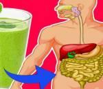 thải độc, thải chất độc, thải độc cơ thể, Chất chống oxy hóa, Hệ miễn dịch, cua so tinh yeu