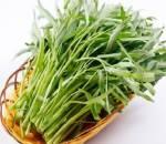 nhiễm độc, rau muống, chế biến, chì, nhận biết rau muống, cua so tinh yeu