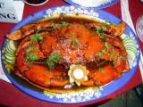 cua biển, thực phẩm, y học, thành phần dinh dưỡng, bổ thận, tráng dương, liệt dương, cuasotinhyeu