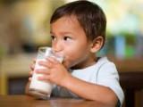Uống sữa, thế nào, để có lợi nhất, cửa sổ tình yêu.
