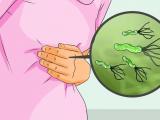 dehp, dạ dày, vi khuẩn hp, cua so tinh yeu