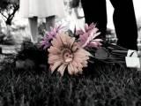 tâm sự tình yêu, vết sẹo, mối tình đầu, thời gian, dứt khoát, lừa dối, tin tưởng, cơ hội, đau thương, hạnh phúc