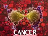 ung thư, vaccine chống lại ung thư, hệ miễn dịch