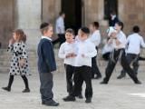 nuôi dạy con thông minh, người Do thái, bí quyết, giáo dục, tự lập