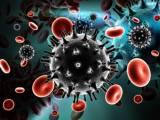 kháng thể, HIV, bệnh lây nhiễm, virus, trung hòa
