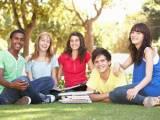 Sinh viên Harvard, gian lận thi cử, giáo dục
