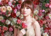 trấn thành, hariwon, thị phi, đám cưới, tình yêu, scandal,Tiến đạt, giải thưởng