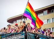 đồng tính  ,   giới tính  ,   hôn nhân   ,  hôn nhân đồng tính