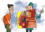 tinh hoàn có những bệnh gì, bệnh ở tinh hoàn, sinh dục nam, cua so tinh yeu