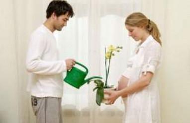 chuẩn bị trước khi mang thai, nam giới cần chuẩn bị trước khi mang thai, những điều nam giới cần chuẩn bị trức khi mang thai, những yếu tố ảnh hưởng đến tinh trùng, làm sao để tăng chất lượng tinh trùng.