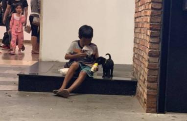 hình ảnh xúc động, cậu bé bón sữa cho chú chó, tin nóng xã hội, cua so tinh yeu