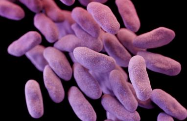 Nhà khoa học, Thụy Điển, cảnh báo, dịch siêu khuẩn, bệnh viện, Việt Nam, nghiên cứu, chứng minh, cua so tinh yeu