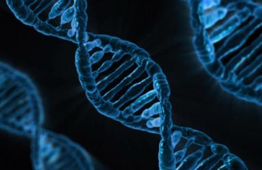 Loại thuốc, Tế bào, Ung thư, Tiêu diệt, Liệu pháp, Tìm ra, Hóa học, Bệnh nhân, Nhà khoa học, Tác dụng, Điều trị, Tiến sĩ, Thuốc ,Nhiễm virus, AIDS, Suy giảm miễn dịch, Nguyên tử, Đa quốc gia ,Tình cờ, Vi-rút, cua so tinh yeu