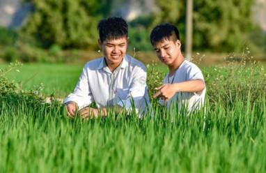 xã hội, facebook, mạng xã hội, cõng bạn đến trường, 10 năm cõng bạn đến trường, ngô minh hiếu, Nguyễn Tất Minh