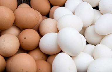 Ăn trứng gà hay trứng vịt tốt hơn?