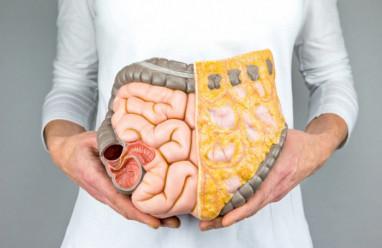 Cách tự xác định mỡ nội tạng để điều chỉnh chế độ ăn, giảm nguy cơ bệnh tim mạch